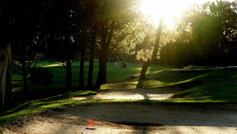 Dez-Onze. A luz da tarde faz brilhar ainda mais o campo